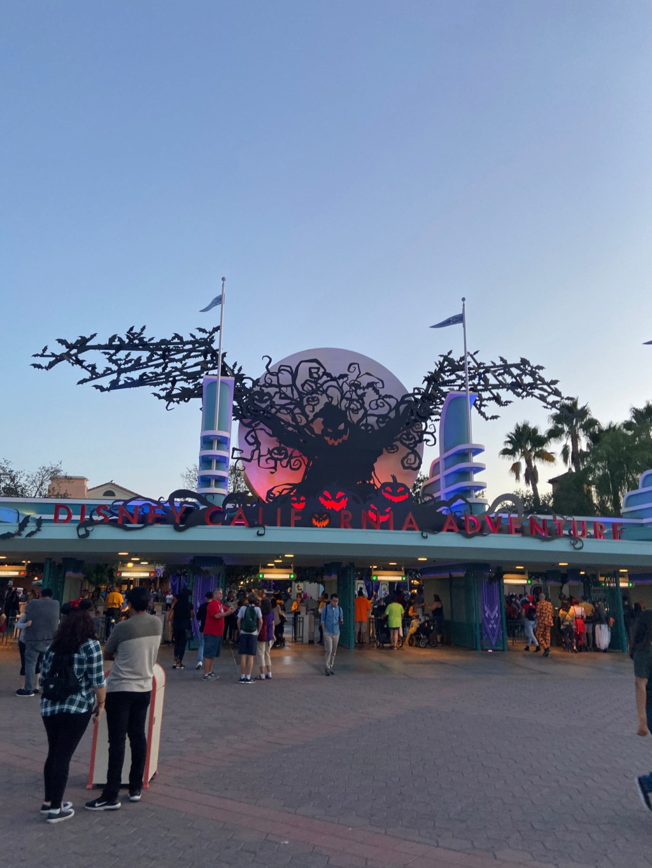 forestgum - California Dream - Octobre 2019 - Disneyland Ressort à partir de la page 3  - Page 3 Img_0325