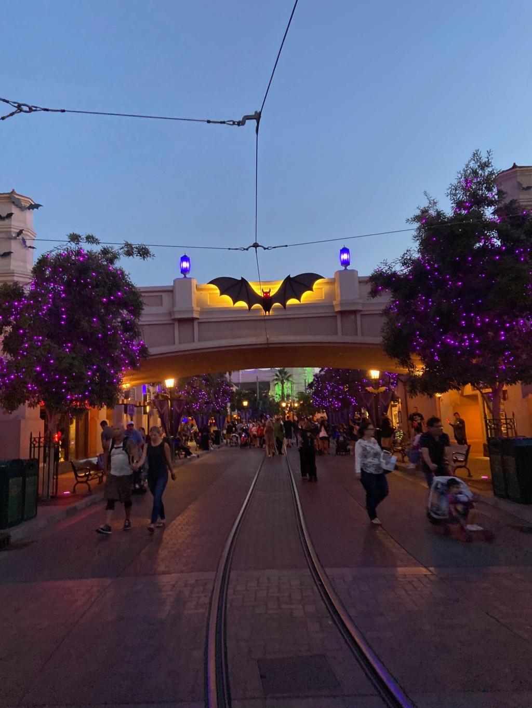 forestgum - California Dream - Octobre 2019 - Disneyland Ressort à partir de la page 3  - Page 3 Img_0326
