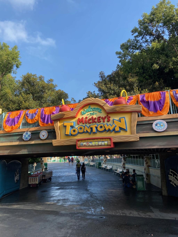 forestgum - California Dream - Octobre 2019 - Disneyland Ressort à partir de la page 3  - Page 3 Img_0713