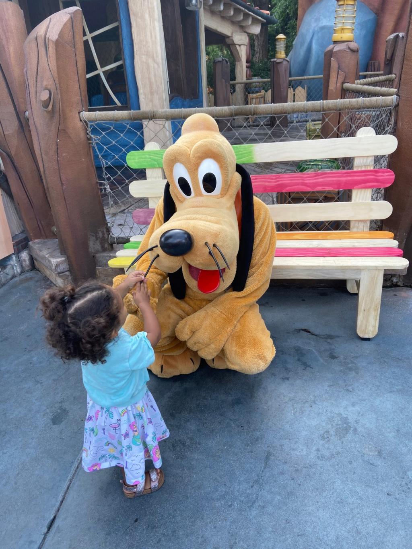 forestgum - California Dream - Octobre 2019 - Disneyland Ressort à partir de la page 3  - Page 3 Img_0714