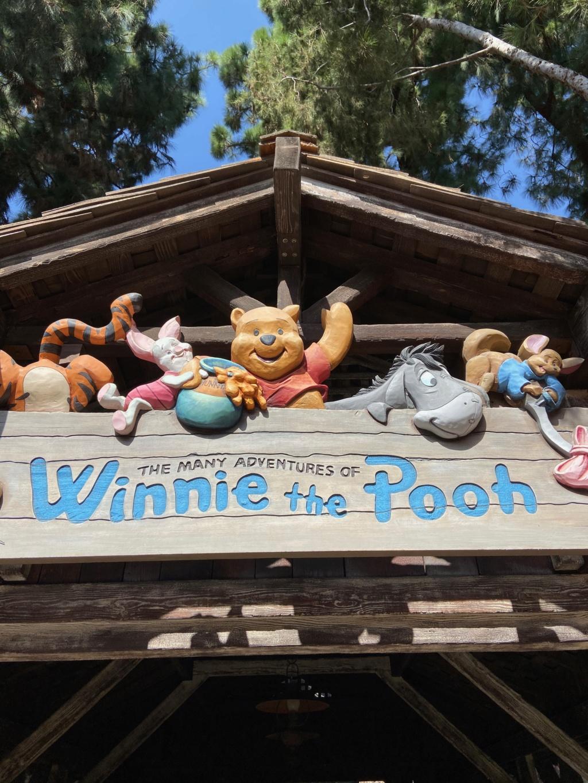 forestgum - California Dream - Octobre 2019 - Disneyland Ressort à partir de la page 3  - Page 3 Img_0730