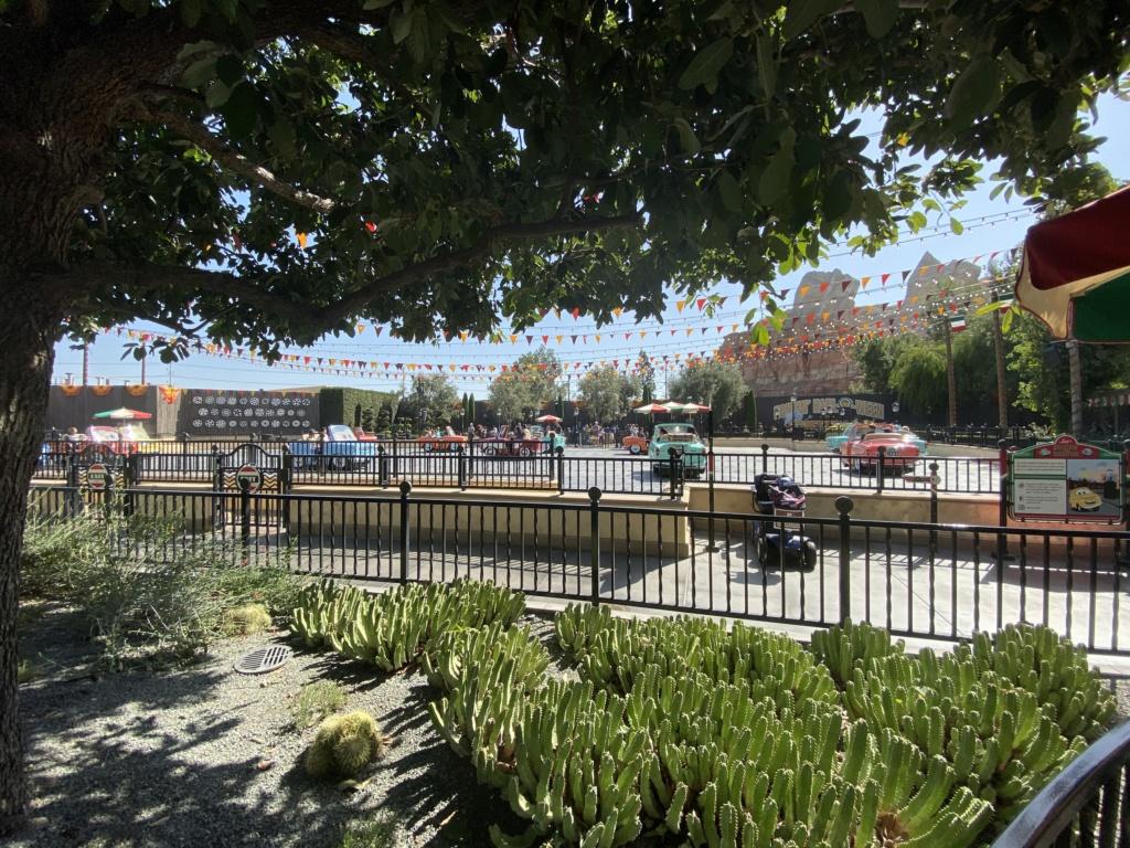 California Dream - Octobre 2019 - Disneyland Ressort à partir de la page 3  - Page 4 Img_0912