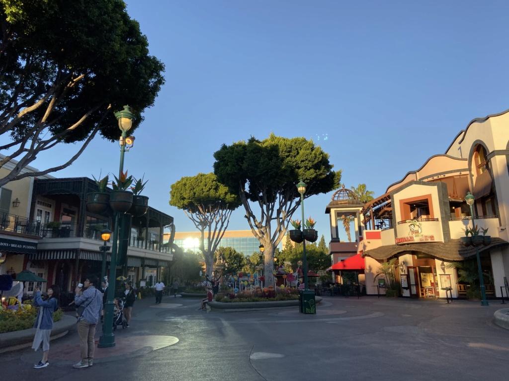California Dream - Octobre 2019 - Disneyland Ressort à partir de la page 3  - Page 4 Img_1134