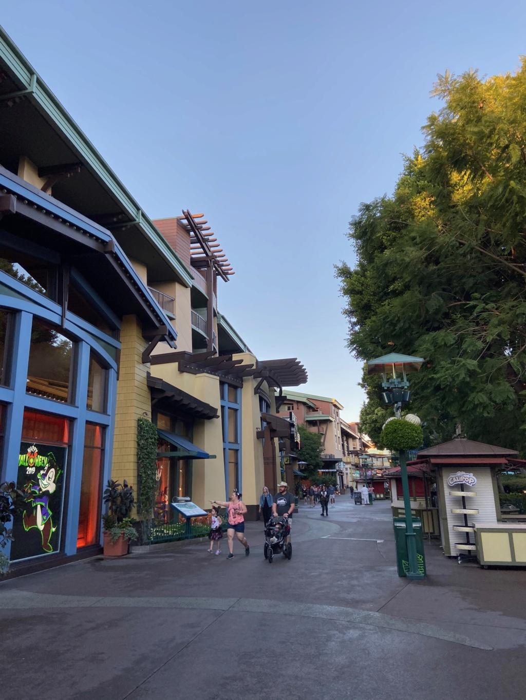 California Dream - Octobre 2019 - Disneyland Ressort à partir de la page 3  - Page 4 Img_1135