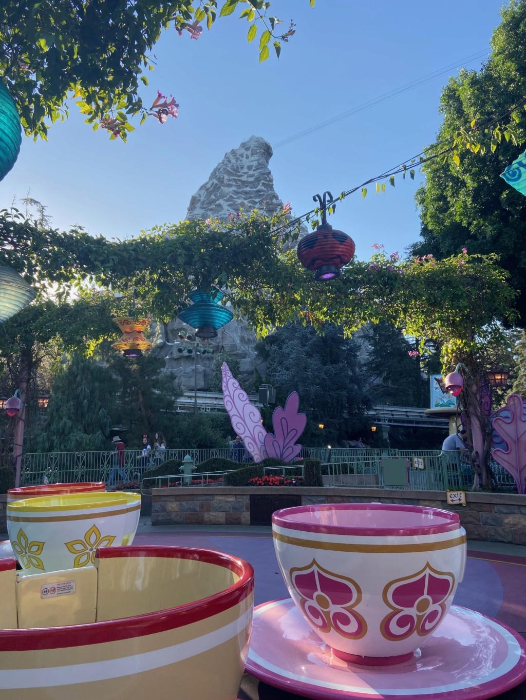 California Dream - Octobre 2019 - Disneyland Ressort à partir de la page 3  - Page 4 Img_1138