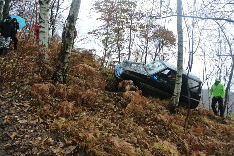 Varaita 4x4 Colori d'autunno 2014 I9795618