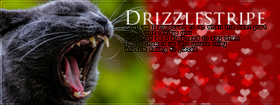 Hey Drizzlepaw Drizzl11