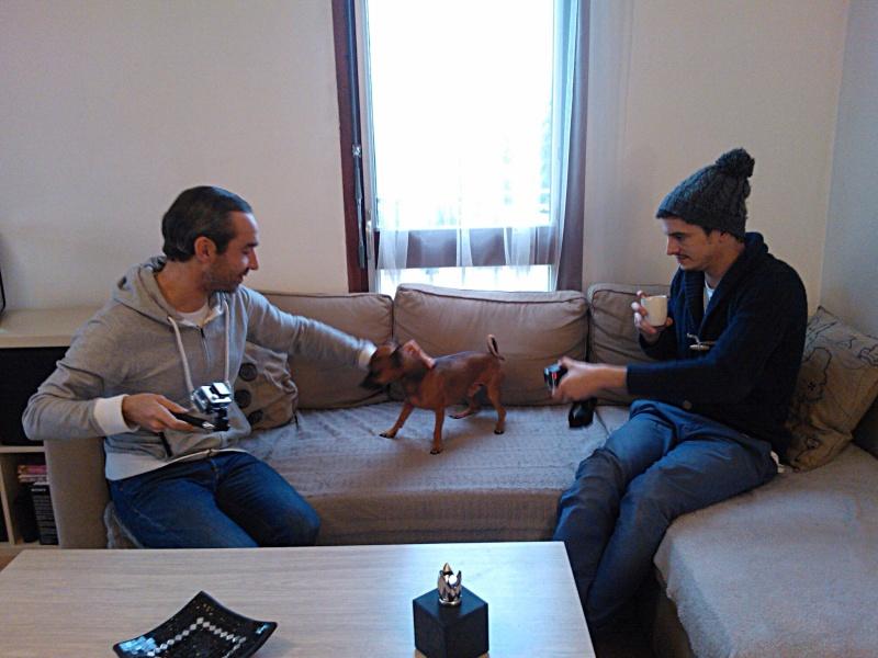 Casting Pub TV recherche chiens et chats - Page 9 Image40
