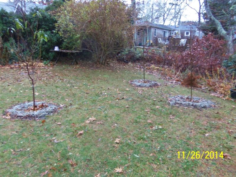 New England Dec 2014 Dec_2_13