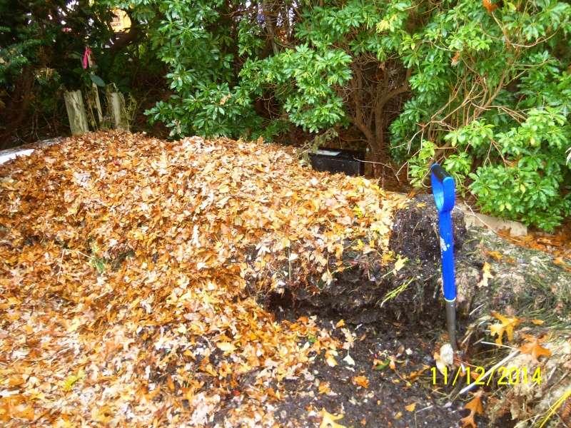 New England, November 2014 - Page 2 Nov_1212
