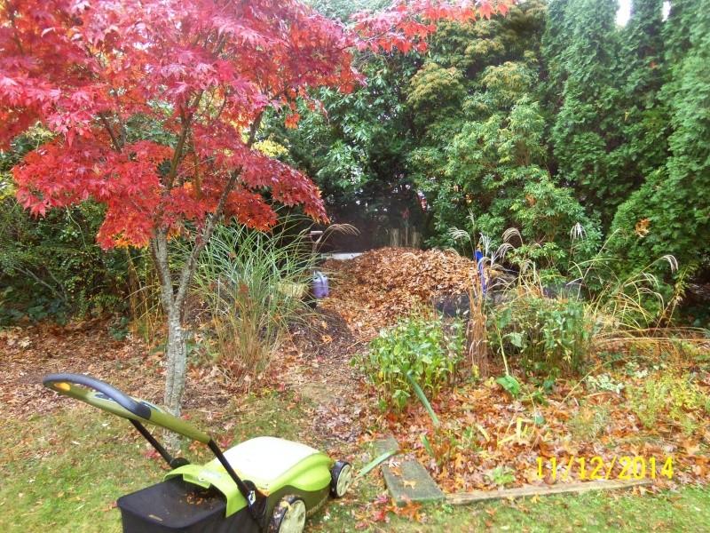 New England, November 2014 - Page 2 Nov_1214