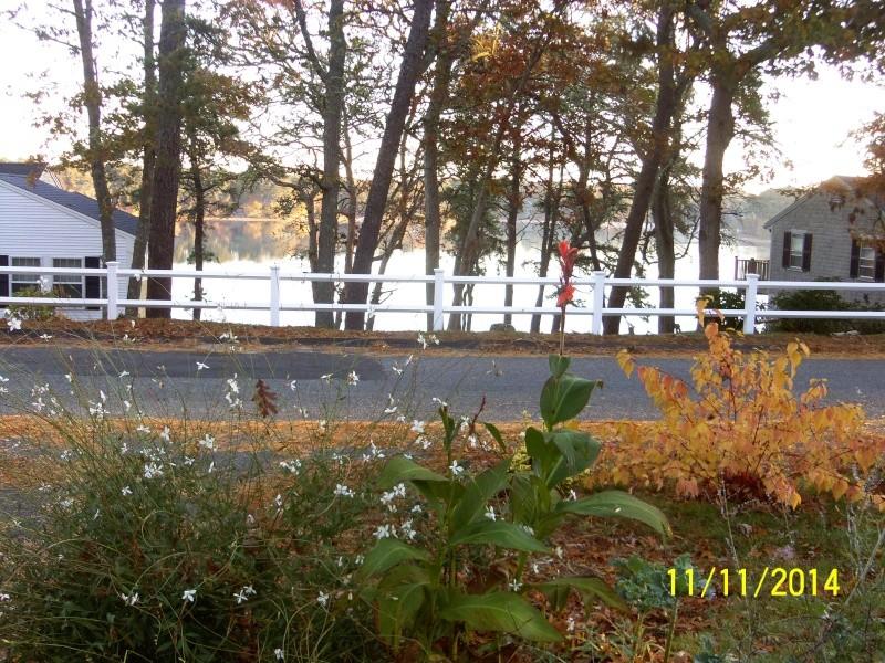 New England, November 2014 - Page 2 Nov_1220