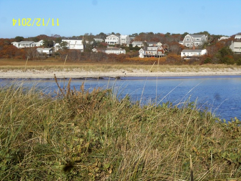 New England, November 2014 - Page 2 Nov_1224