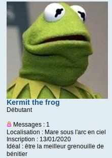 Présentation kermit the Frog Captur26
