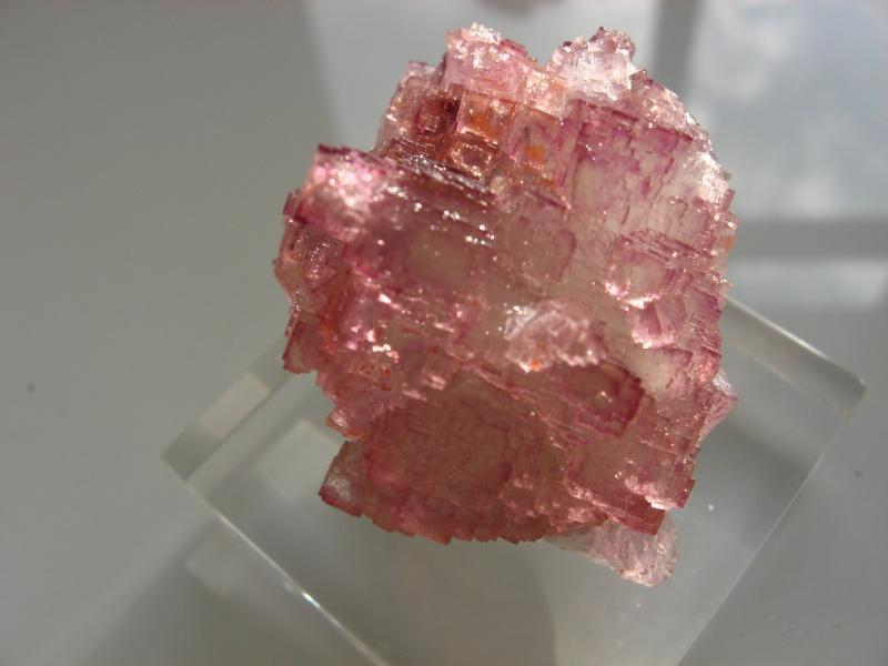 Différentes fluorites de la mine CLARA 01710