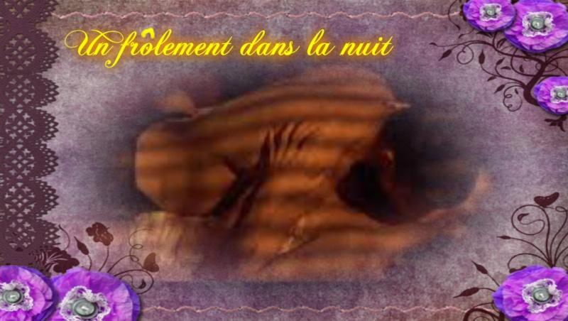 """""""Frôlement"""": image inspiratrice du 15 novembre au 5 décembre - Page 6 Pyriod12"""