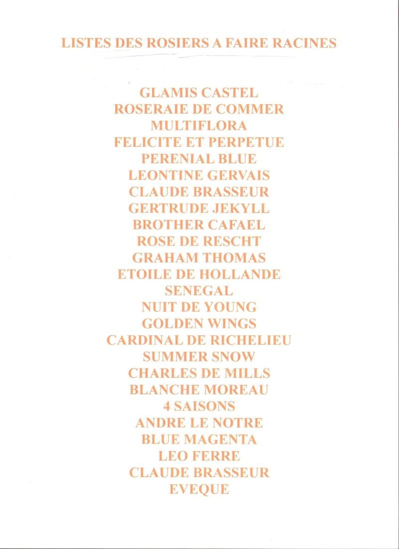 liste de rosiers à échanger Liste_10