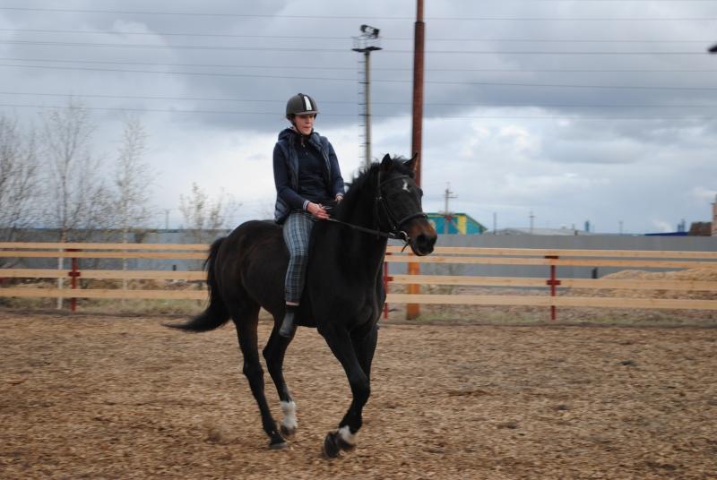 Спасите доброго коня!!! Dsc_0310