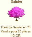 Gainier => Fleur de Gainier Sans_181