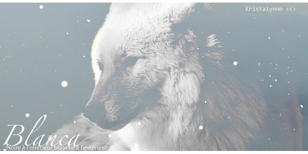 Changer les rangs des loups ? Blanca10