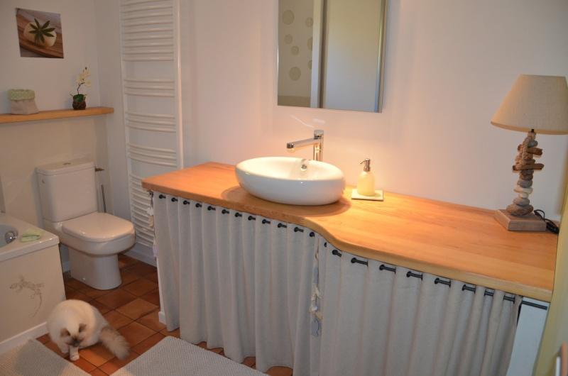 Envie d'une nouvelle salle de bain ... 032_8223