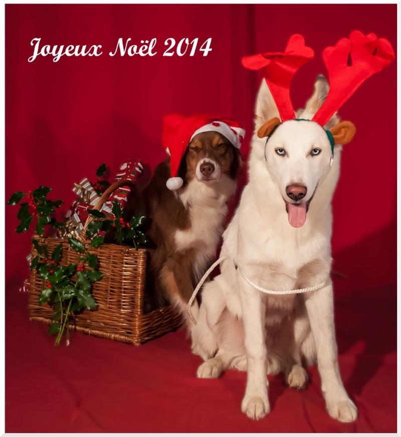 Noël arrive, concours photos Noel1_10