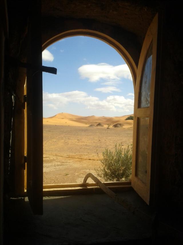 Travaux gazelle bleue à Merzouga 2014-112