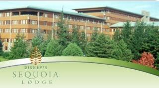 TR: Sejour (sequoia lodge) du 4 au 7 décembre (GFC) (partie posté 15 janvier ) 12187610