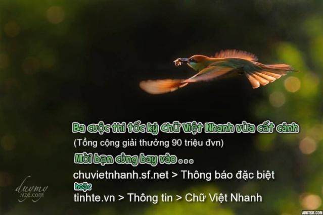 BA CUỘC THI TỐC KÝ CHỮ VIỆT NHANH Vừa Cất Cánh Image011