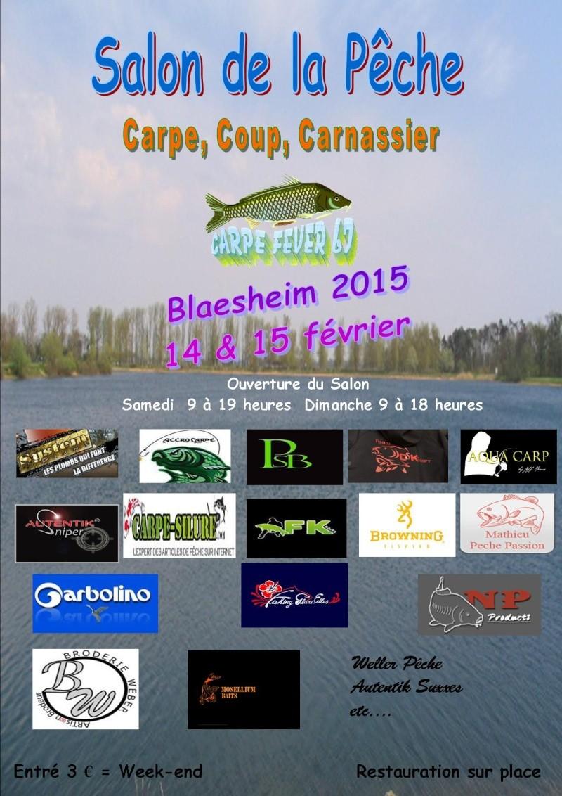 Salon pêche Blaesheim 2015 - Page 3 Aff_sa13