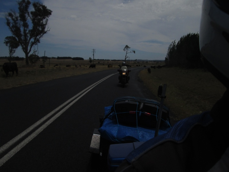 A ride through the Northern Tablelands 2014 - Page 4 09310
