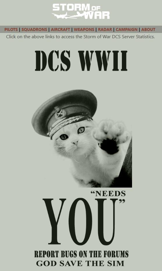 Storm Of War vs DCS  146