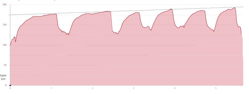 Christian ---) Stage LBA courses Hors Stade à Guerlédan  2x1km-10