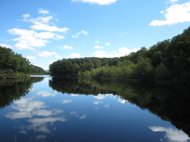 Lac de Roussillou (Riom-ès-Montagnes) - Page 2 Fabien89