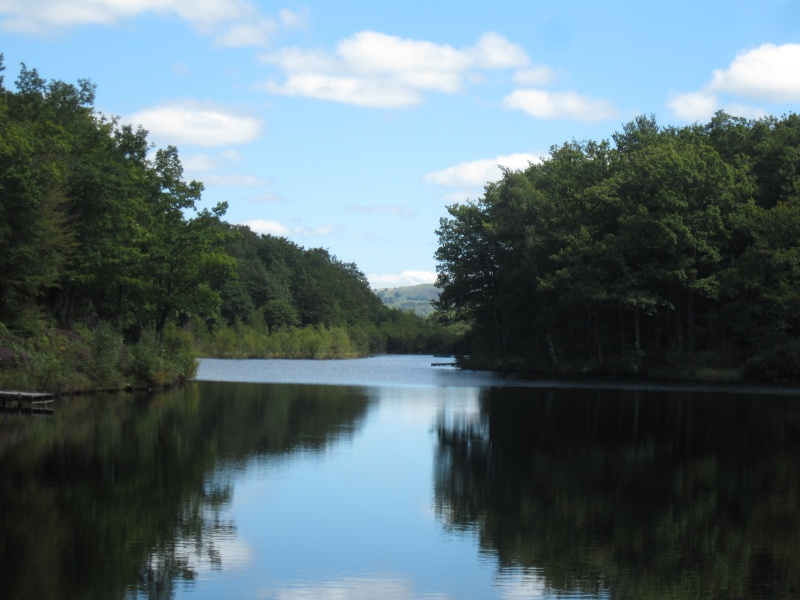Lac de Roussillou (Riom-ès-Montagnes) - Page 2 Fabien90