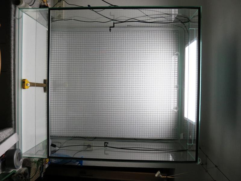 Bau meines großen Orchidarium 2014-125
