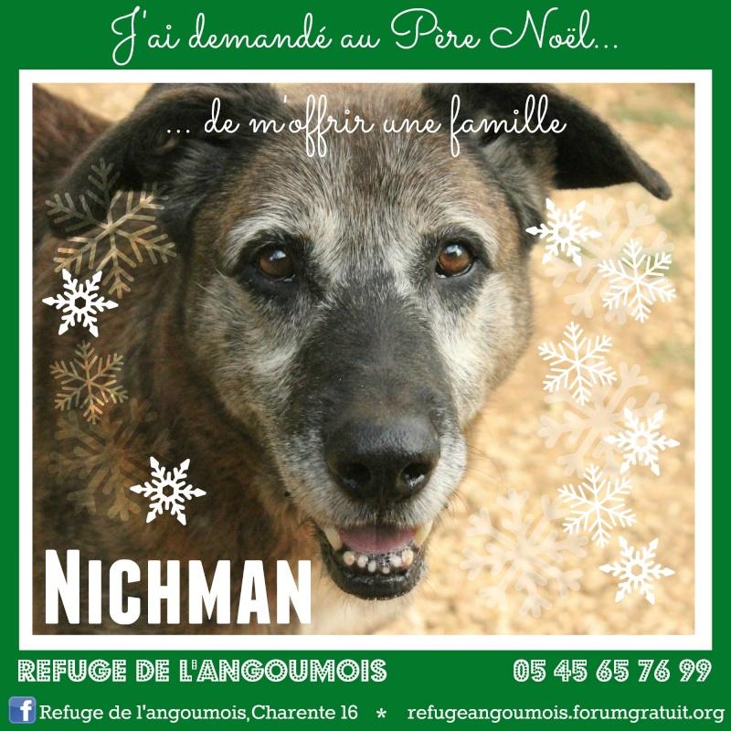Calendrier de l'Avent 2014 Nichma11