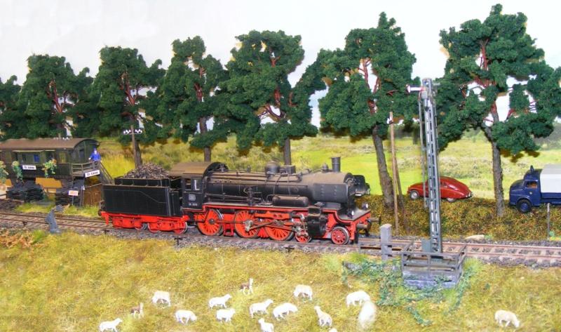 Foto-Diorama in H0 Dscf0842