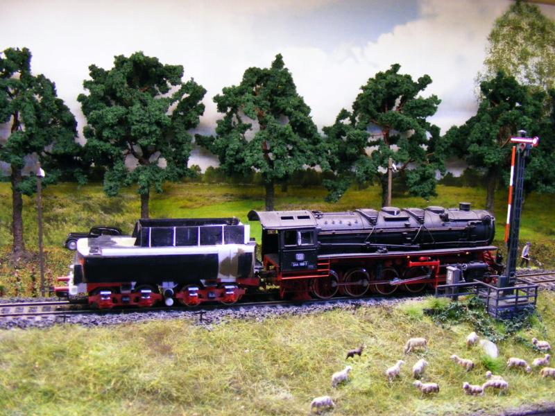 44 1267 mit 2'2'T34-Wanne  - Seite 3 Dscf1650