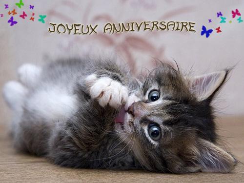 Bon Anniversaire Sylvaine Chat-a10