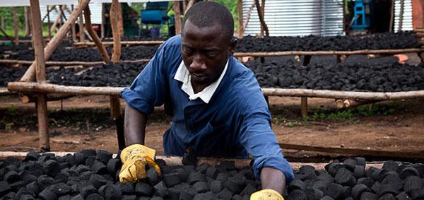 Un substitut de charbon à base... de peaux de bananes ! 318