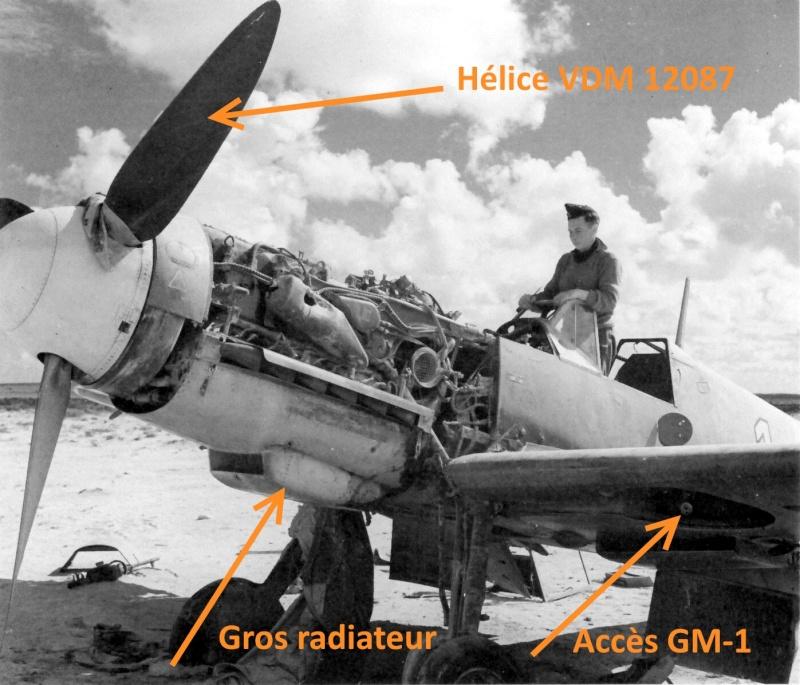 """Bf 109 G2"""" le dernier vol 30/09/1942 """"  """"der Stern von Afrika"""" Hasegawa 1/48( FINI ) Messer10"""