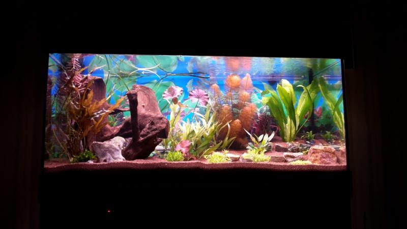 Aquarium 180 Litres 2014-113