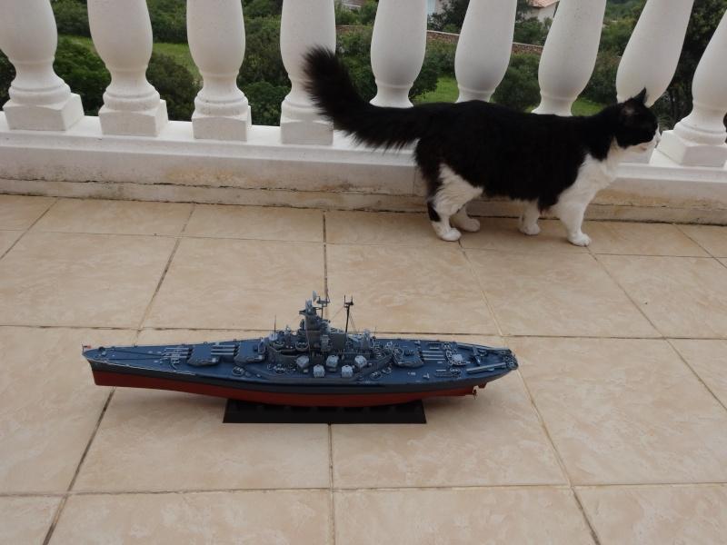 USS ALABAMA 1/350 par Castor Dsc00210