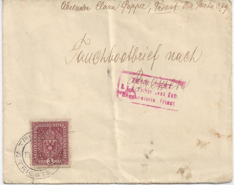 1914 - 1918   Der Untergang der K.u.K. Monarchie - Seite 3 Bild_512