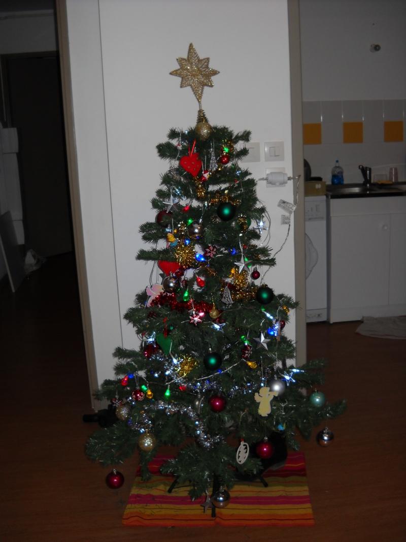 C'est bientôt Noël: montre moi ton sapin  !!  - Page 5 Dscn0011
