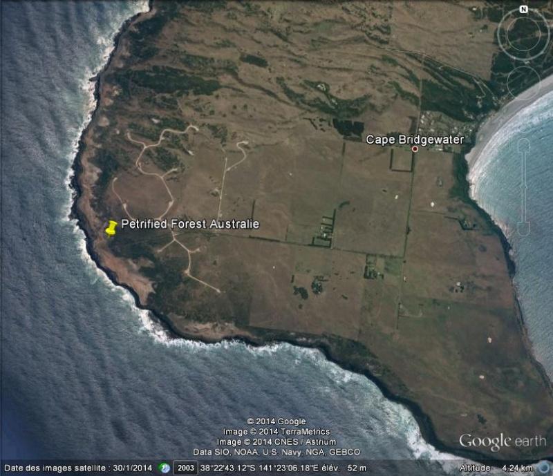 Forêt pétrifiée de Cape Bridgewater - Victoria - Australie Ge_for10