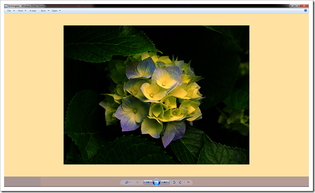 How To Fix Windows Photo Viewer Displaying Yellow Or Orange Tint For White and Transparent Images 2012-110