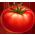 Connexion Tomate10