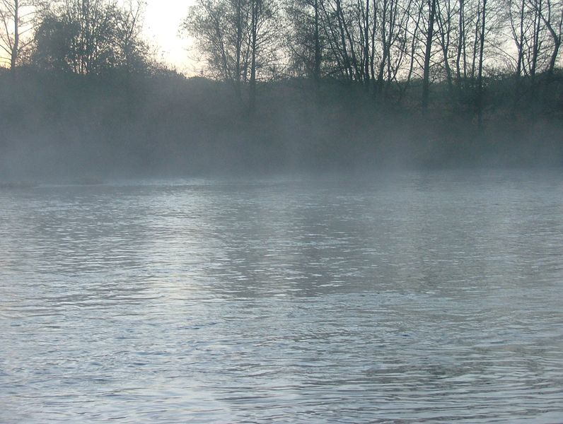 Sortie sur la moyenne Moselle - Page 2 Dscf5710